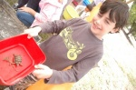 gotopless2011-103.jpg